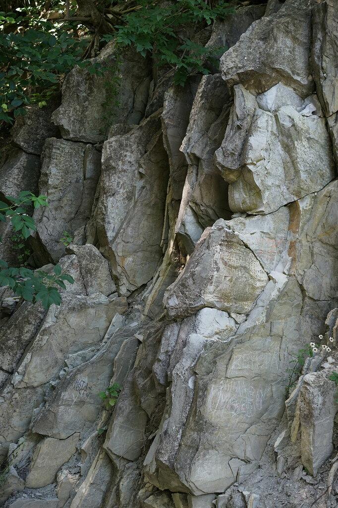 Верхний уровень Сафари-парк, Геленджик