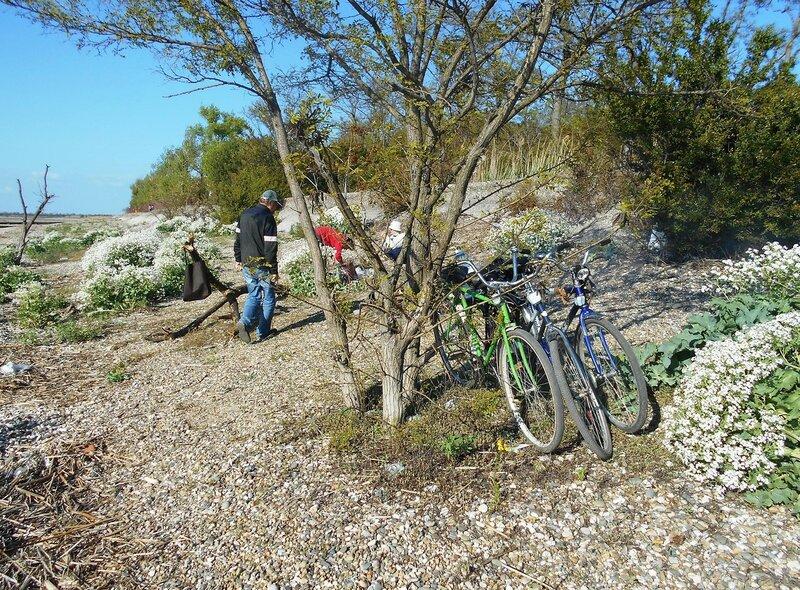 А помогли велосипеды здесь очутиться нам, не зря... DSCN5404.JPG