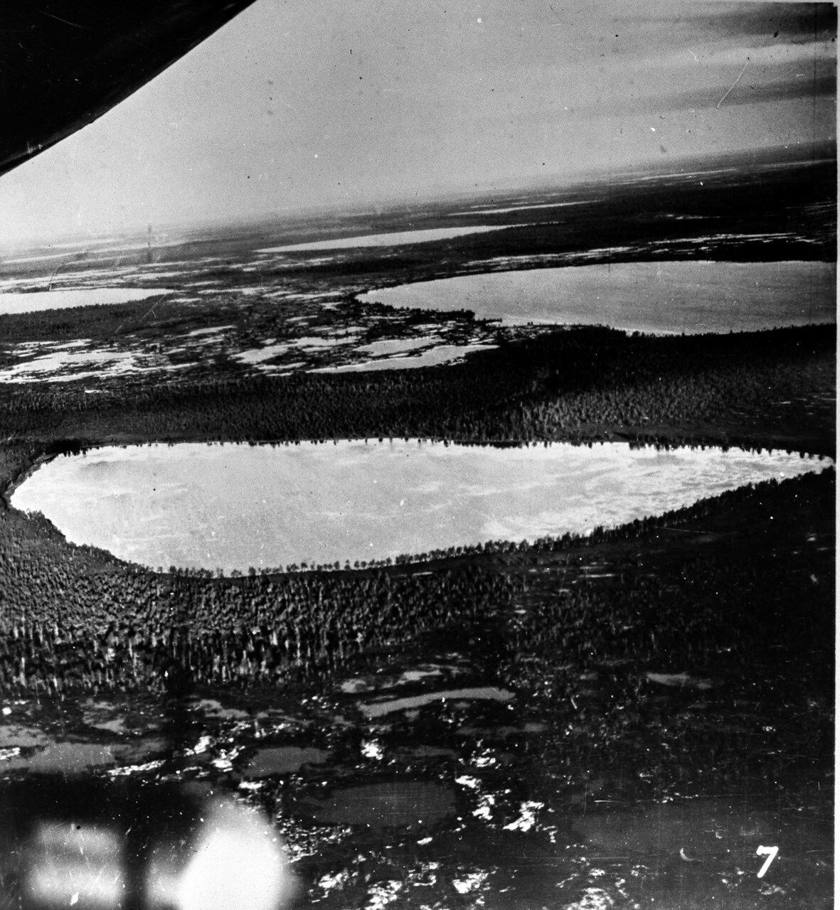 1931. Таймыр. Вид с воздуха на болотистую местность. Во многих районах вода чередуется с зарослями деревьев