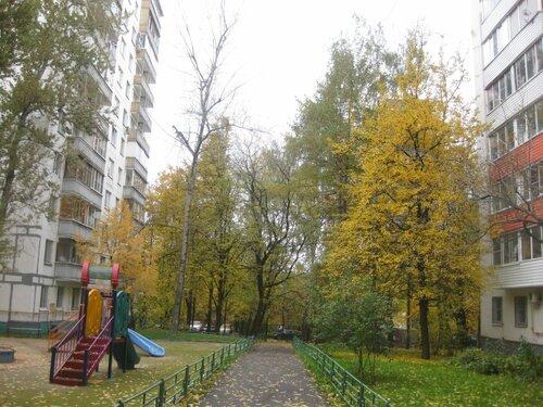 https://img-fotki.yandex.ru/get/28072/131884990.92/0_1317d9_f3aeda58_L.jpg