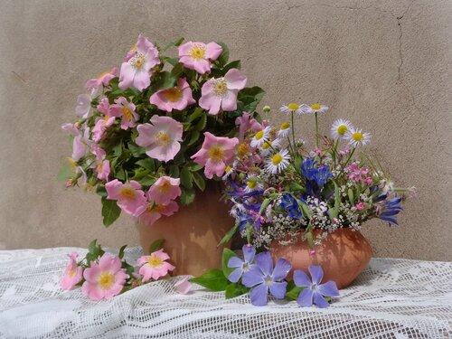 Акварельные краски весны