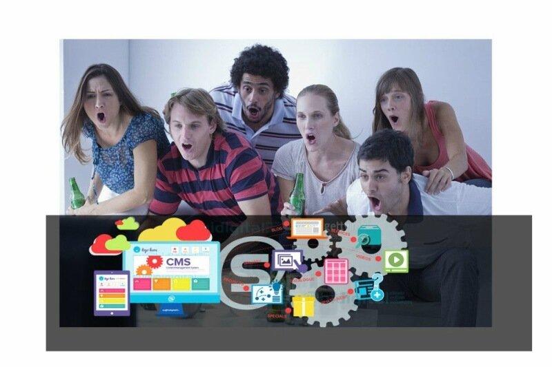 Какую CMS, систему управления сайтом выбрать: сравнение Joomla и WordPress
