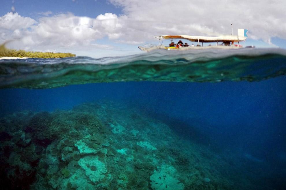 8. В наши дни возможность своими глазами увидеть подводный мир Большого Барьерного рифа привлек