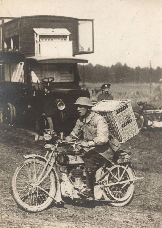 18. Британский солдат везет голубей на линию фронта, Западный фронт, 1916 год.