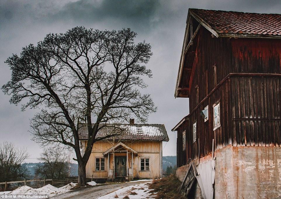 Снег лежит нетронутым рядом с двумя заброшенными домами в округе Бускеруд к западу от Осло в Норвеги
