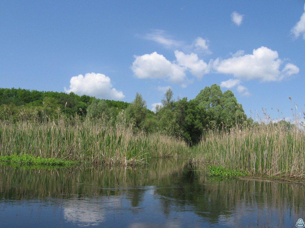 Устье Боромли
