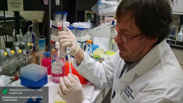 Эбола больше непредставляет мировую угрозу— ВОЗ