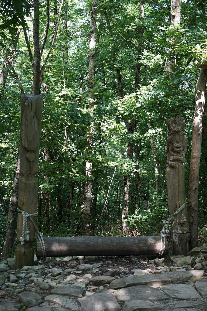 Лавочка из дерева. Верхний уровень Сафари-парк, Геленджик