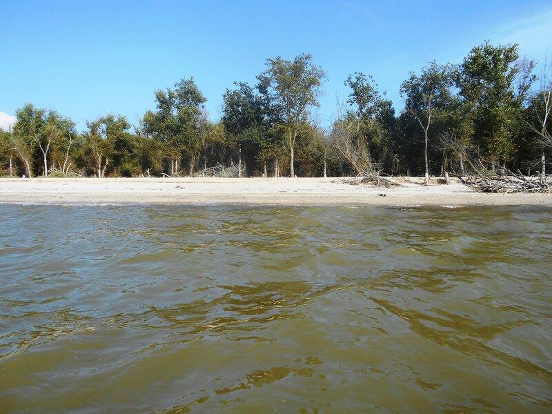 Взгляд с моря... Вода, песок, лес ... DSCN8250.JPG