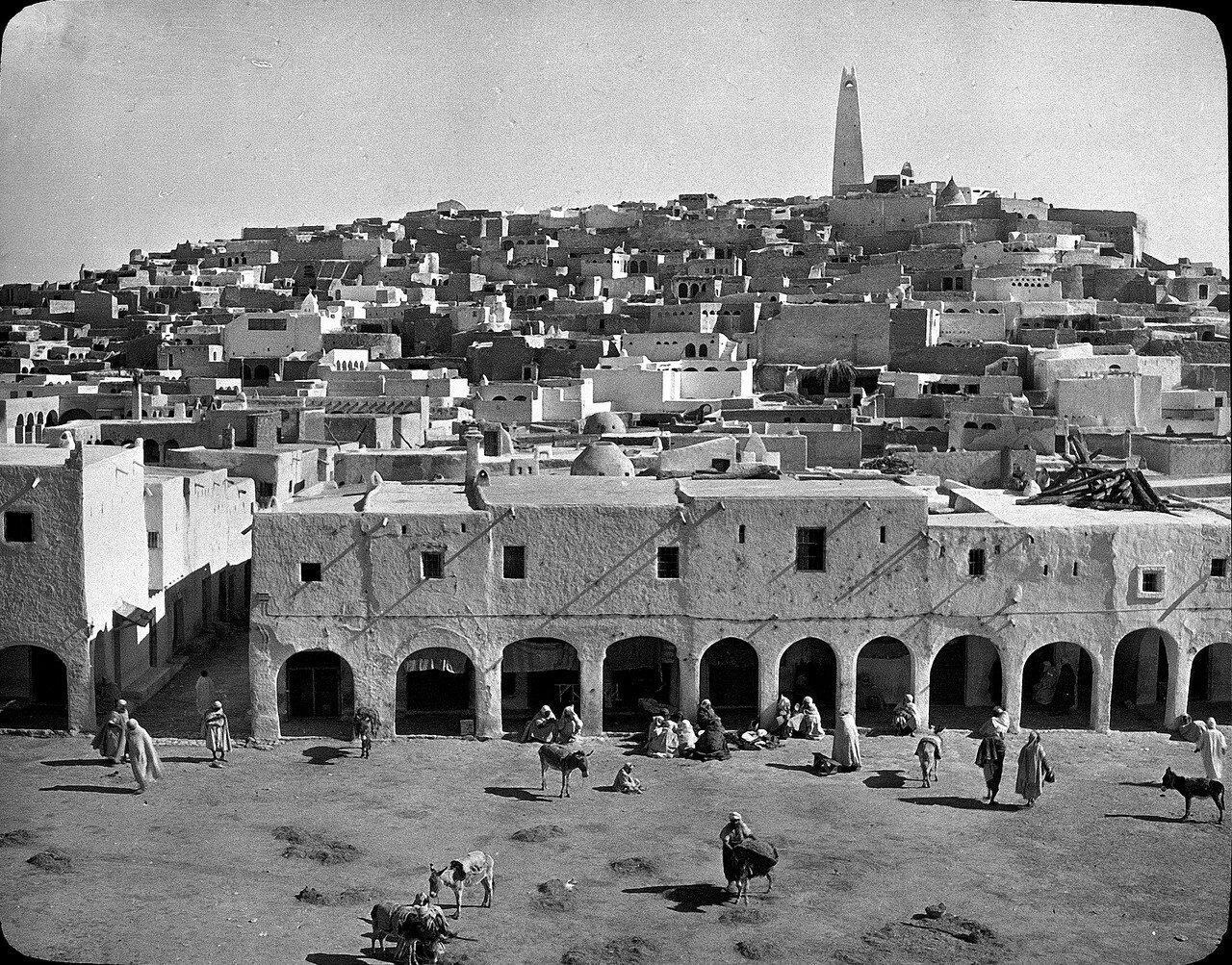 Алжир. Гардая. Общий вид