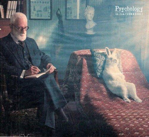 Кроль у психоаналитика.jpg