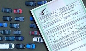 Правительство просит сохранить РМ в системе «Зеленая карта»