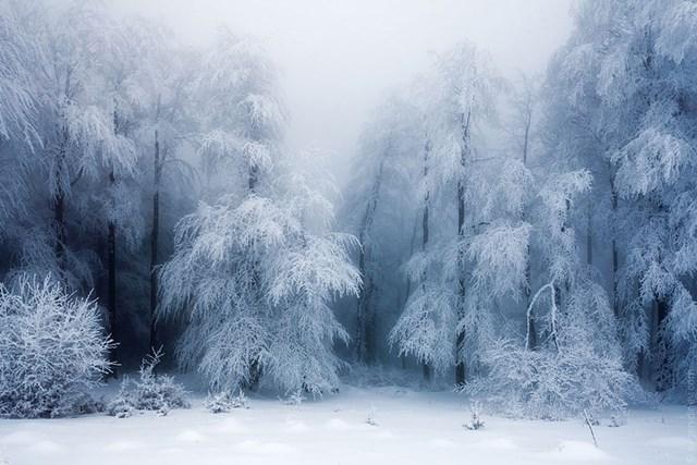100 самых красивых зимних фотографии: пейзажи, звери и вообще 0 10f5be 862f8736 orig