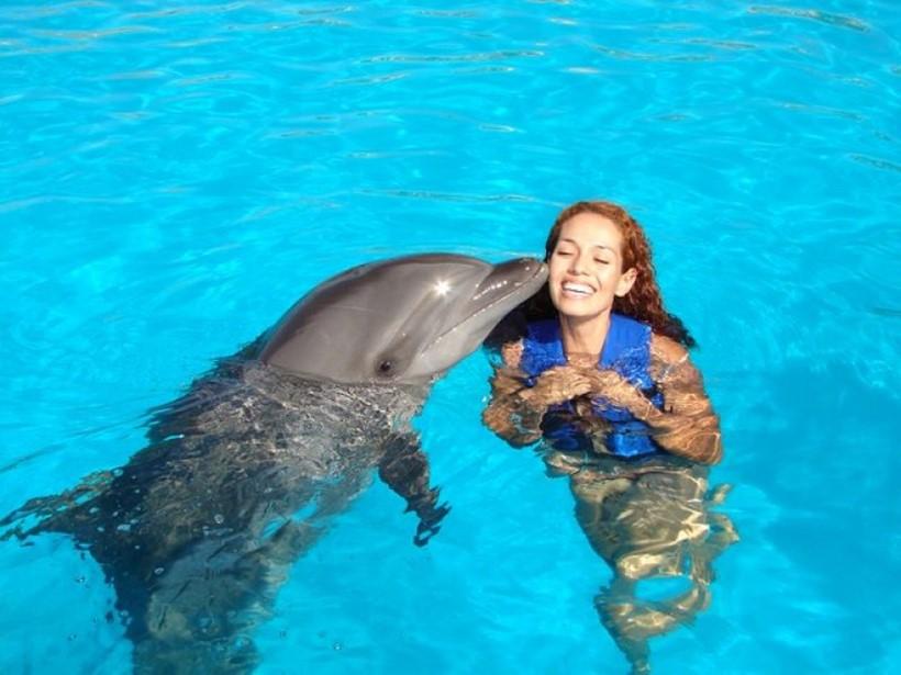 Беременная женщина и дельфин акушер 0 12e23a 87fc1a34 orig