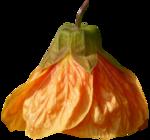 «Fruits_Village_by»  0_8a63d_bda9994a_S