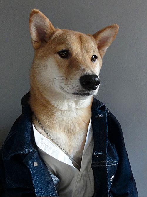Оригинальный блог модной мужской одежды