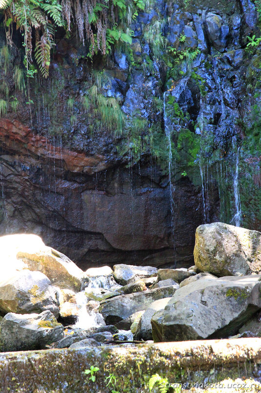Мадейра, левада 25 Fontes