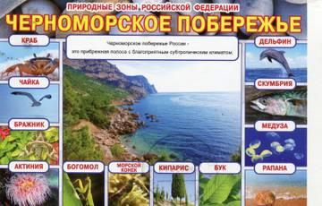 https://img-fotki.yandex.ru/get/28256/118912681.13c/0_306db9_2fec5d34_orig.jpg