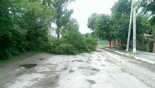 Коммунальные службы Бельц не справляются с последствиями стихии