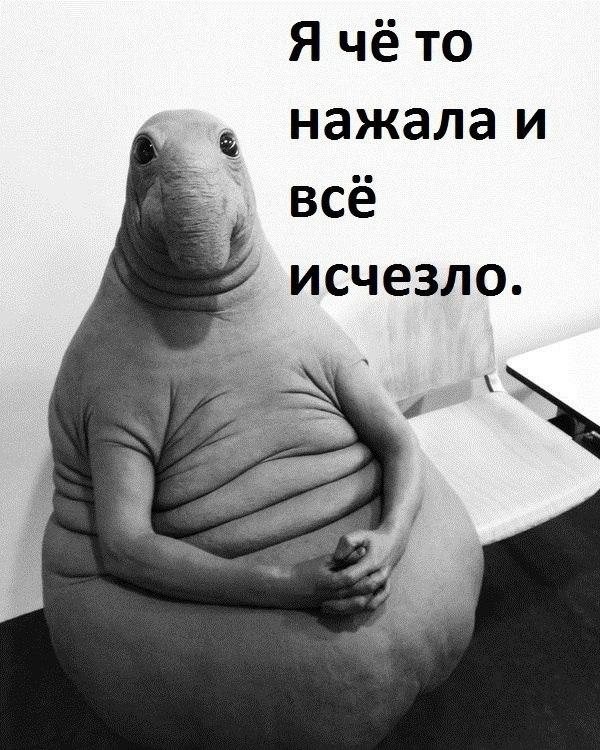 Российские пользователи придали Ждуну новые черты характера — теперь это персонаж, который оконфузил