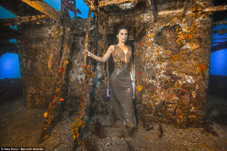 Карина Олиани твердо намерена сохранить гармонию морской флоры и фауны и пролить свет на существован