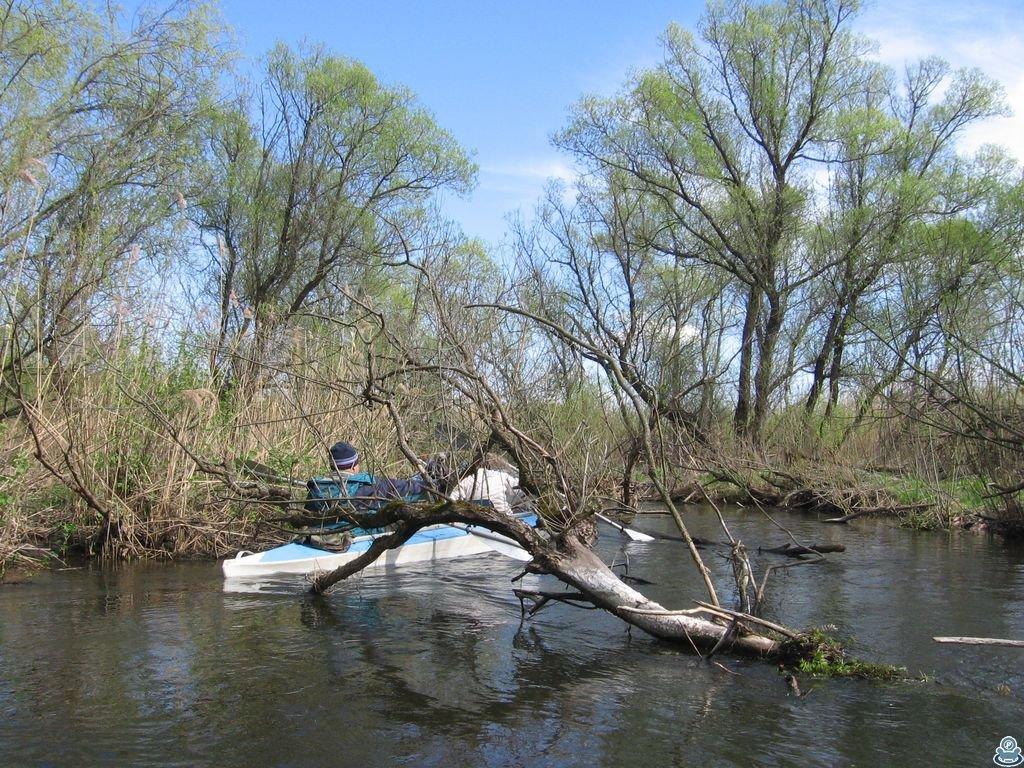 На реке Боромля