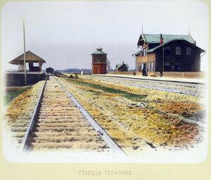 Станция Терновка