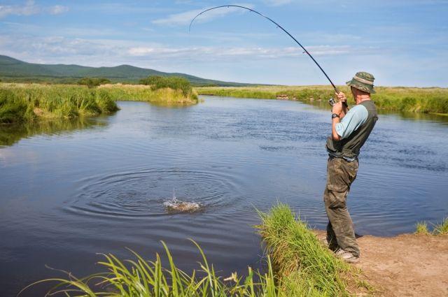Ссегодняшнего дня вУкраине ограничили вылов рыбы