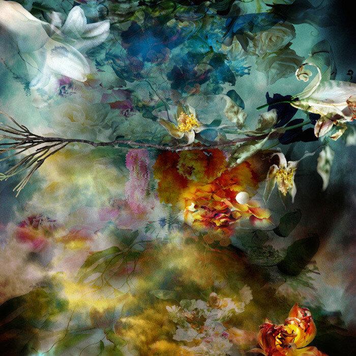 Фотограф Изабель Менин и ее загадочные цветы