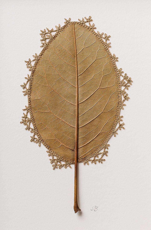 Fragile Crocheted Leaf Sculptures by Susanna Bauer