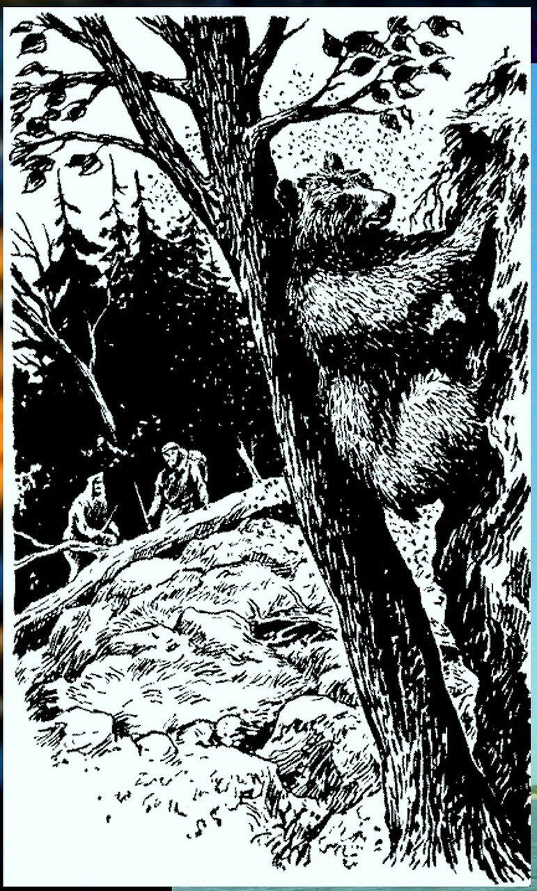 Иллюстрация к книге В.К.Арсеньева Дерсу Узала (8).jpg