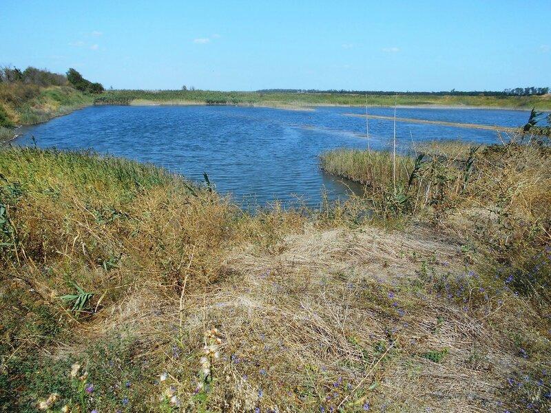 Синь озера, и Лета знаки ... DSCN8839.JPG