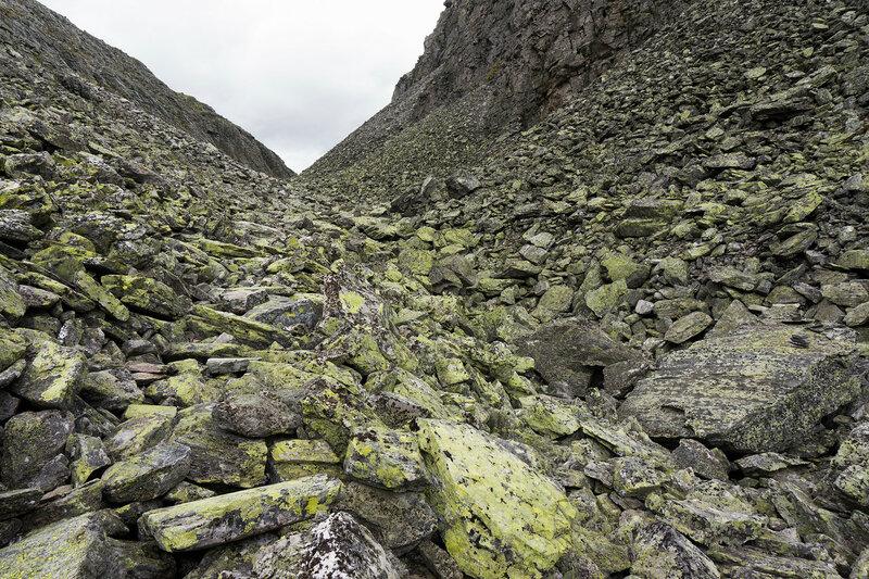 камни и желтый лишайник в горах Rondane (Рондане)