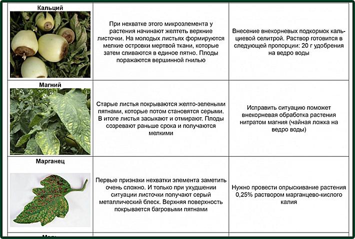 https://img-fotki.yandex.ru/get/28256/86749096.102/0_d2738_fe8d97b6_orig.jpg