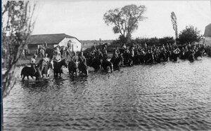1915. Казаки вывели лошадей на водопой