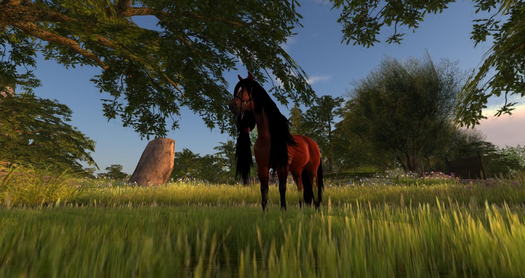 horseavatar3
