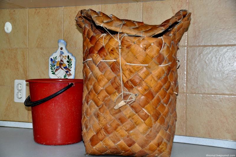 Берестяной пестерь или белый боровой  гриб