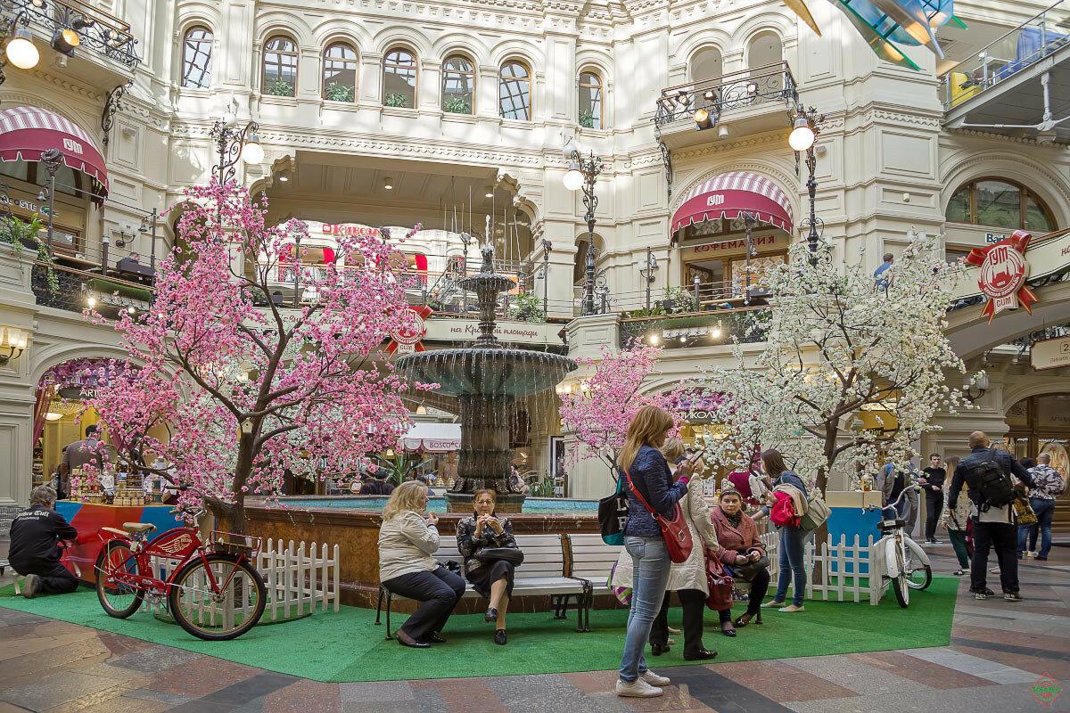пластиковые фестиваль московская весна фотографии был назначен