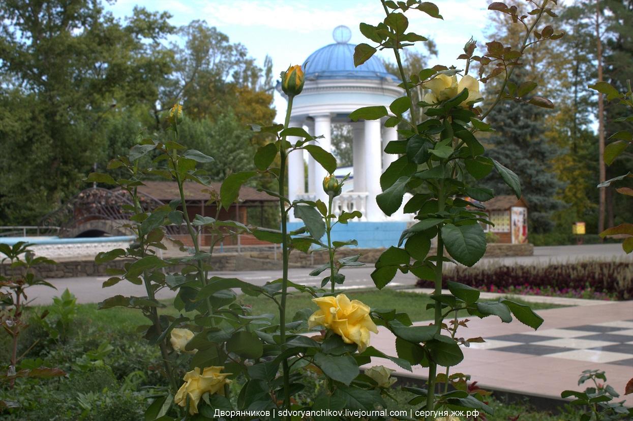 Осень №3 - Жёлтые розы и ротонда - Парк ВГС - 27 сентября 2016