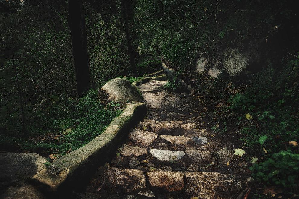В 18 километрах от города Синтра находится мыс Кабо-де-Рока — самая западная точка Европы . Сте