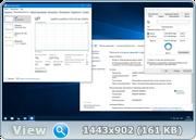Microsoft Windows 10 SingleLanguage 14393.206 x64 RU BOX-MICRO