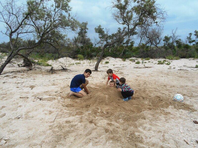 Закопки, пески и компания ... DSCN5916.JPG