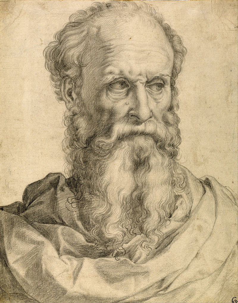 Francesco_Salviati_-_Head_and_Shoulders_of_a_Bearded_Man_-_Google_Art_Project.jpg