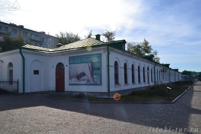 музей_природы_muzej_prirody