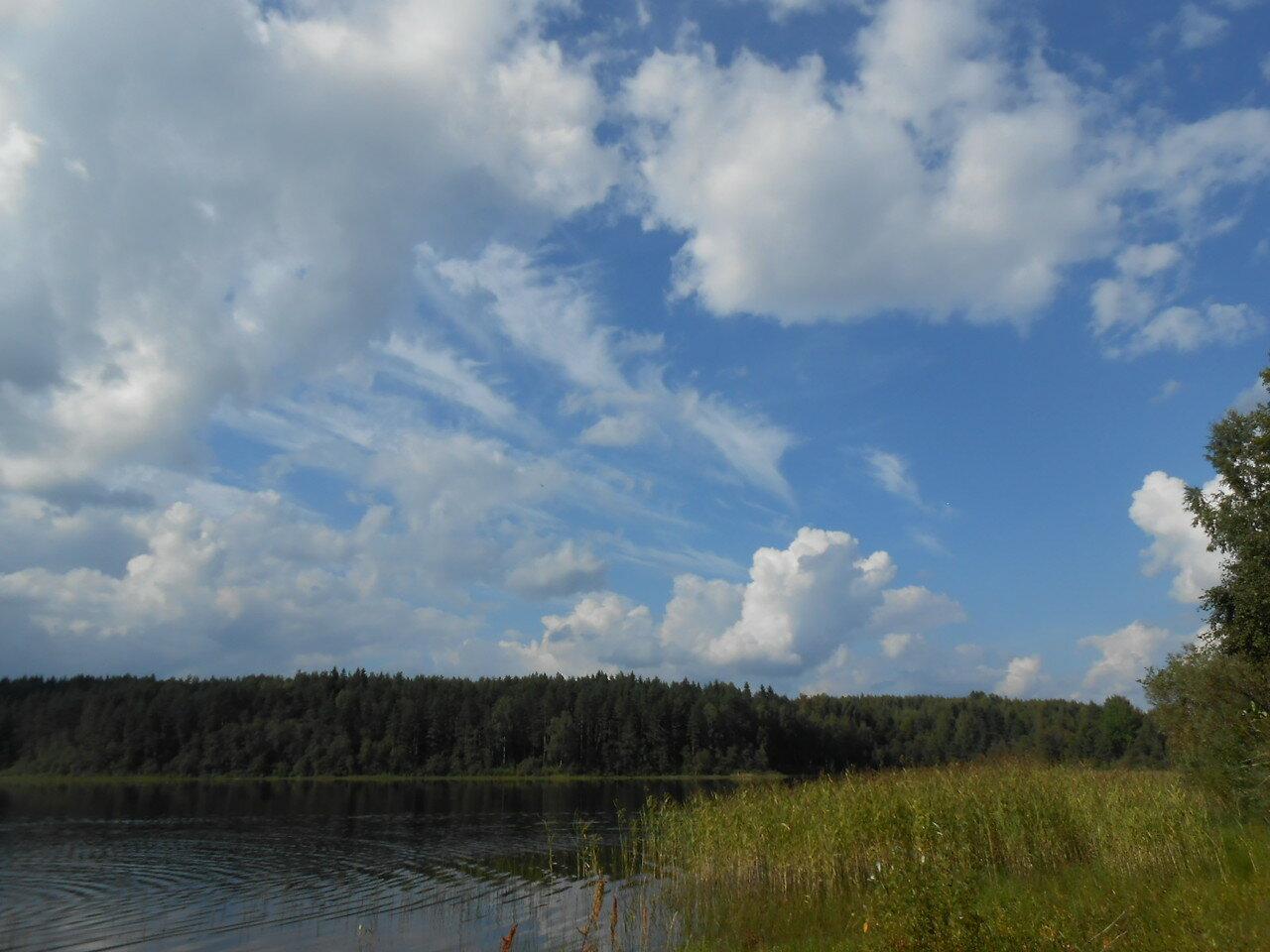 Середейское озеро (восточный берег)
