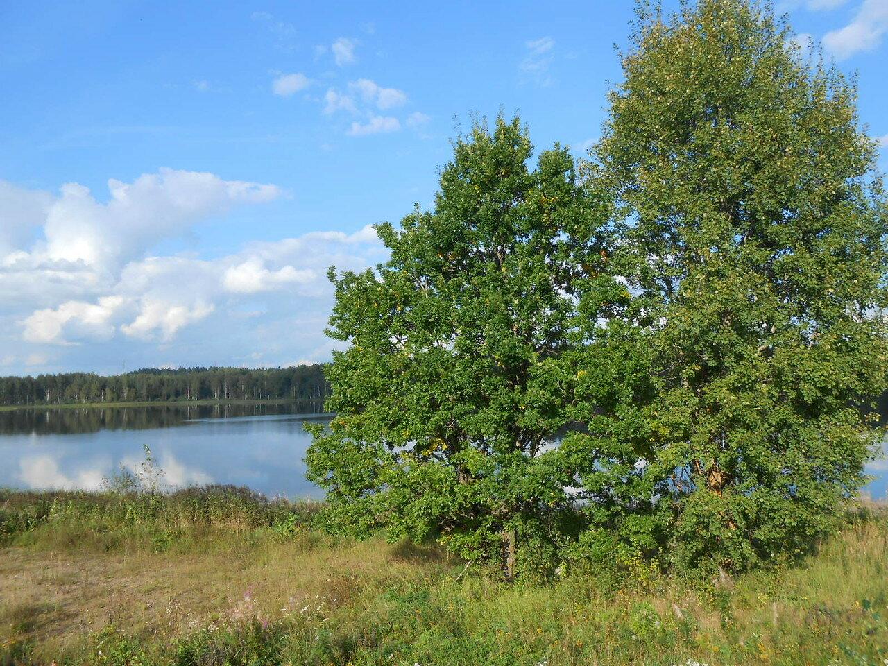 Короцкое озеро