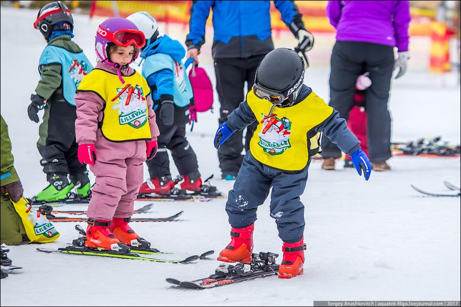 Норвежские дети на лыжах