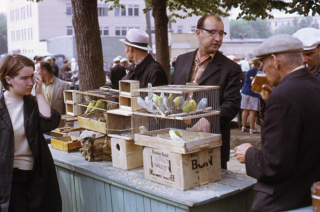 66897 Птичий рынок Andy Sedik 73.jpg