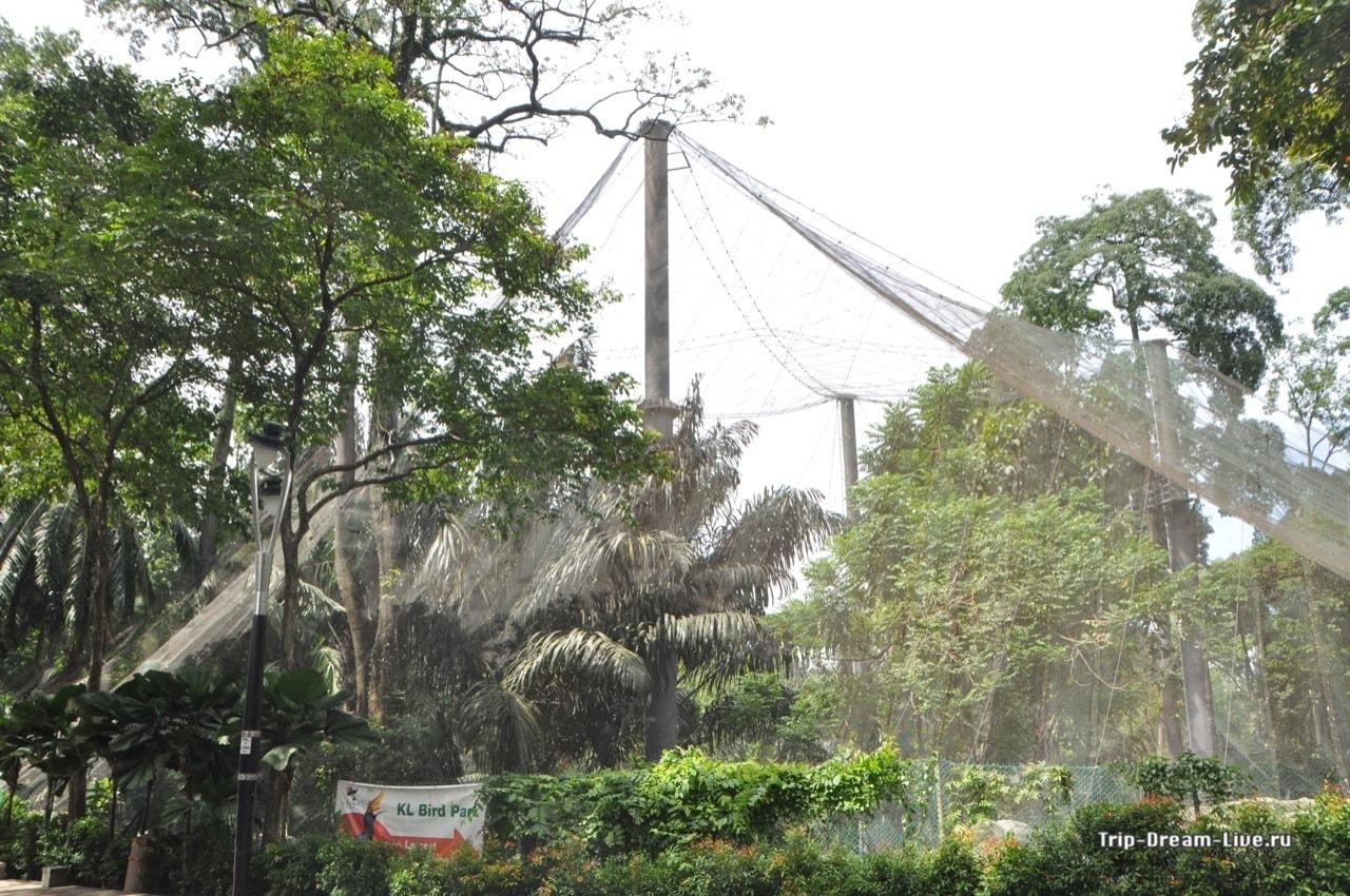 На фотографии хорошо видно сетку, которой накрыт весь парк