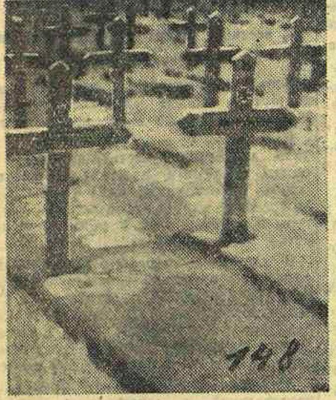 «Красная звезда», 21 апреля 1944 года, Трофейные немецкие фотографии